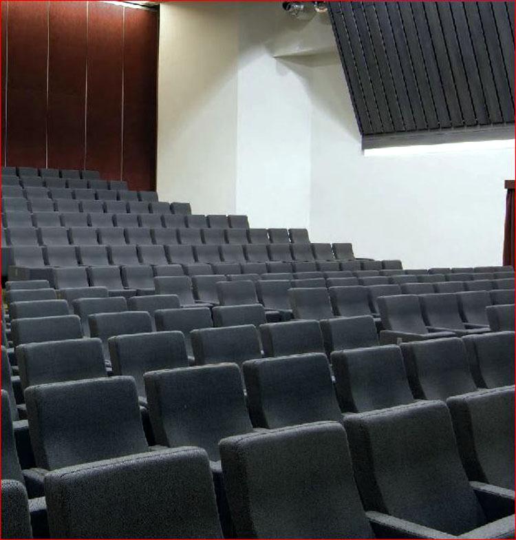 si ge rabattable pour cinema theatre et amphi lac nog. Black Bedroom Furniture Sets. Home Design Ideas